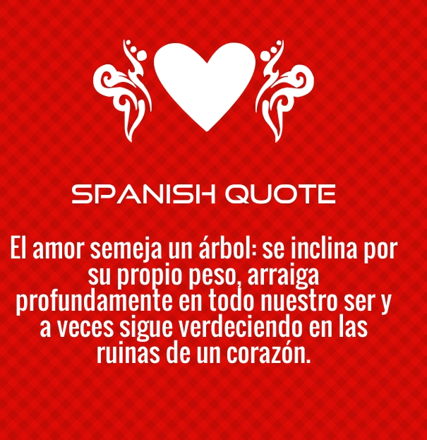 Quotes About Love Spanish : spanish love quotes and poems for him her