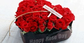 happy rose day quotation