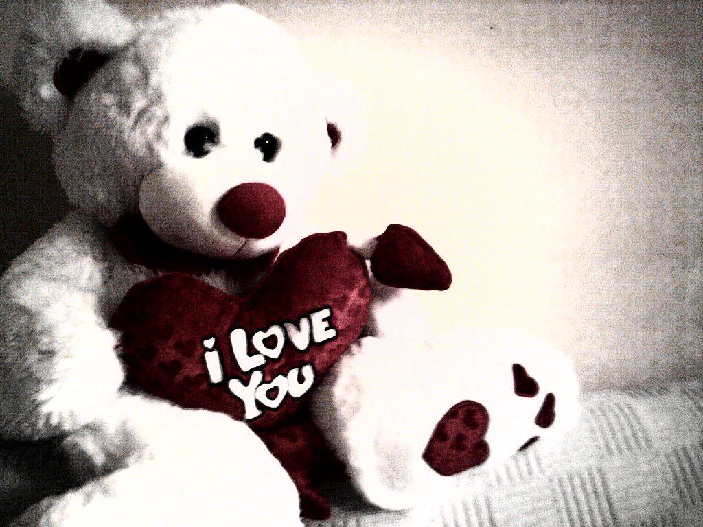 beautiful teddy bears with flowers