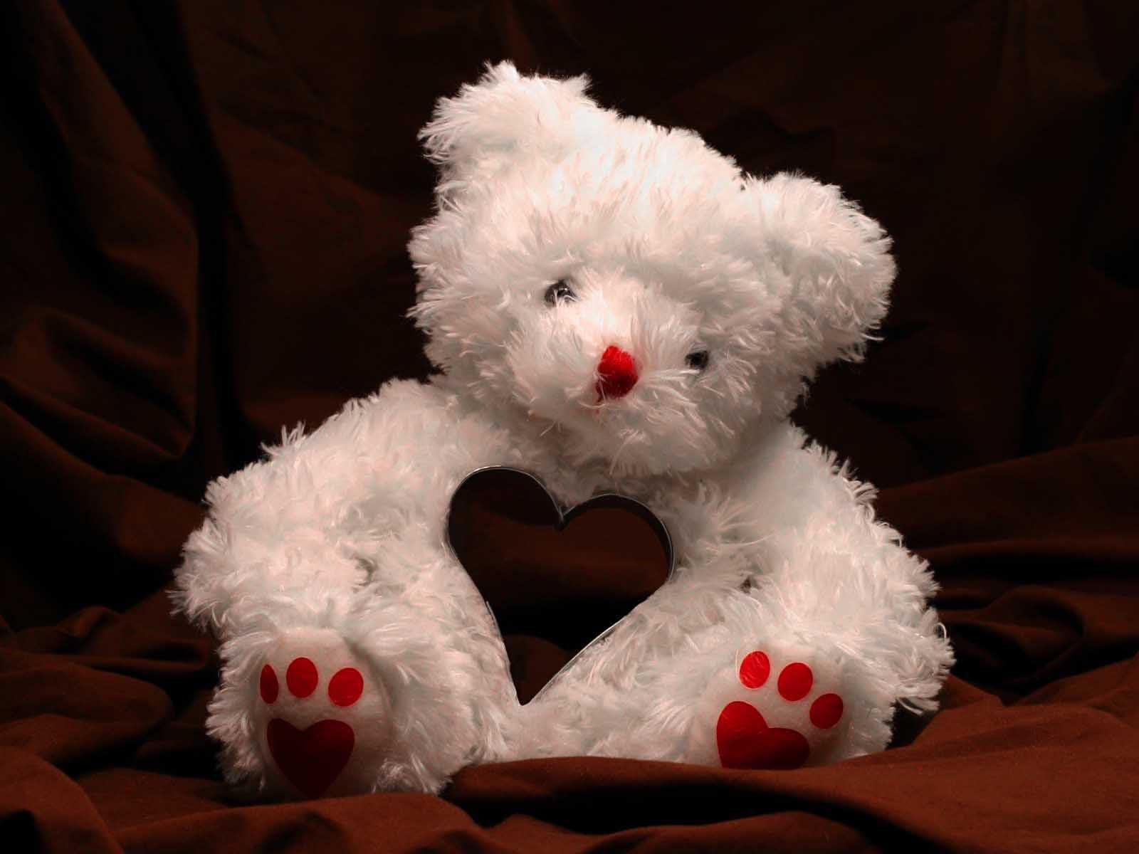 Love-White-Teddy-Bear-Wallpaper