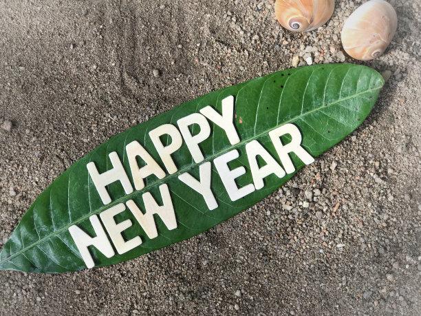 Happy New Year 2019 Green Leaf Wallpaper Photo